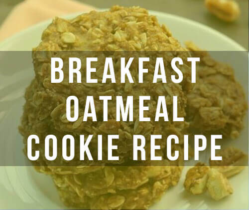 Healthy Oatmeal Cookies – A Craving Crushing Recipe